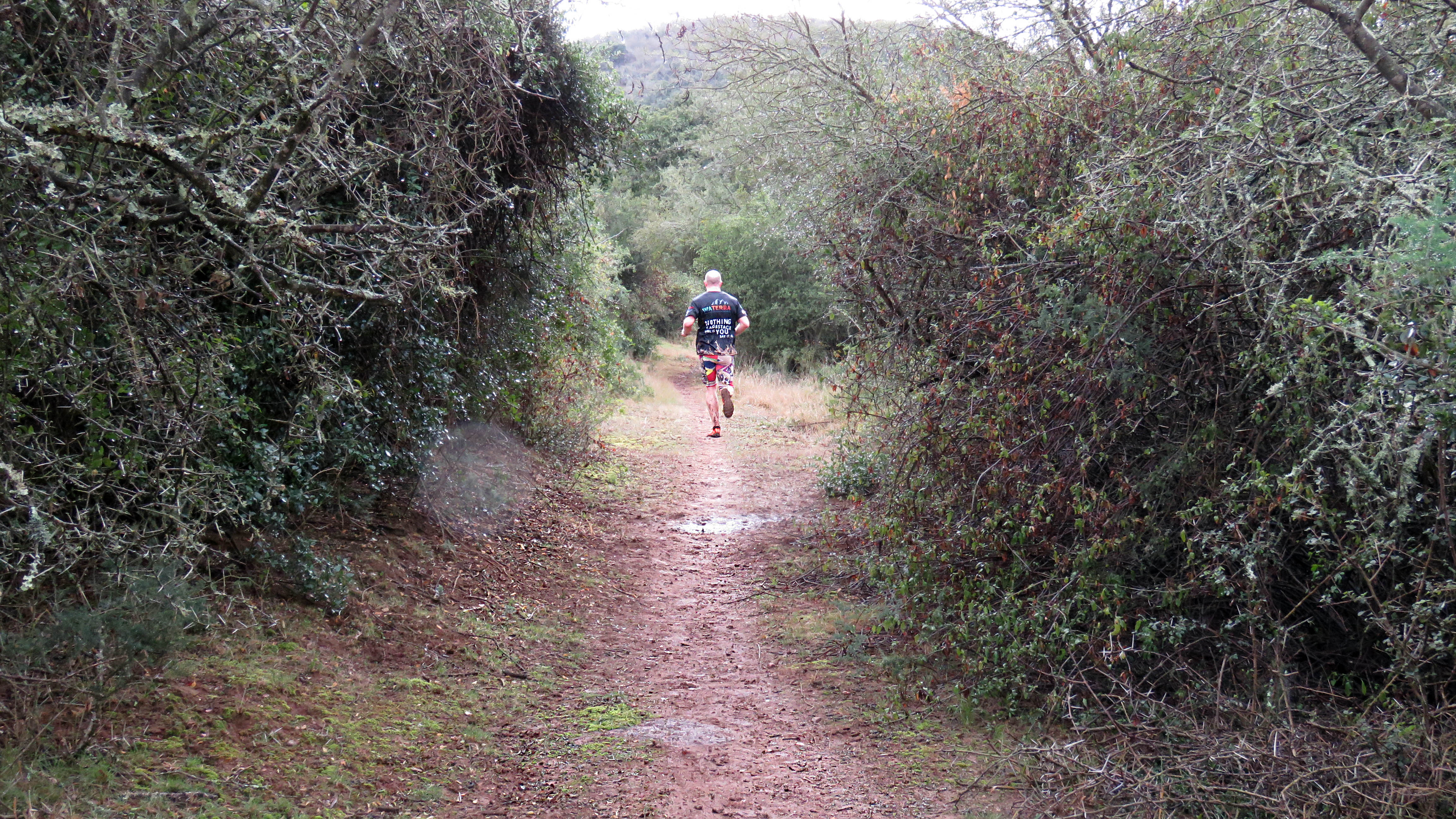 hayterdale trailrun 2018-08-05  (57)